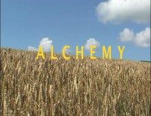Alchemy – The poetics of bread