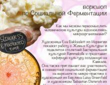 Micropractice Arkhangelsk