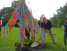 The Wishing Tree – co-creating the future