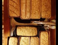 Poetry of Bread – Workshop Omstilling Sagene