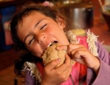 The Companion Festival of Bread