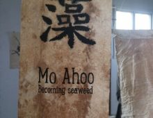 Moo Ahoo – becoming seaweed